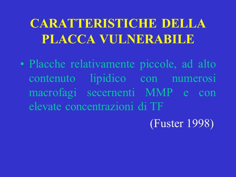 CARATTERISTICHE DELLA PLACCA VULNERABILE