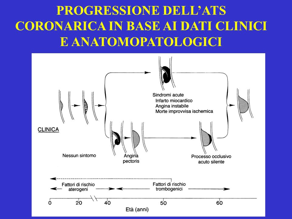 PROGRESSIONE DELL'ATS CORONARICA IN BASE AI DATI CLINICI E ANATOMOPATOLOGICI