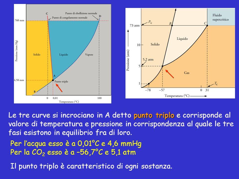 Le tre curve si incrociano in A detto punto triplo e corrisponde al valore di temperatura e pressione in corrispondenza al quale le tre fasi esistono in equilibrio fra di loro.