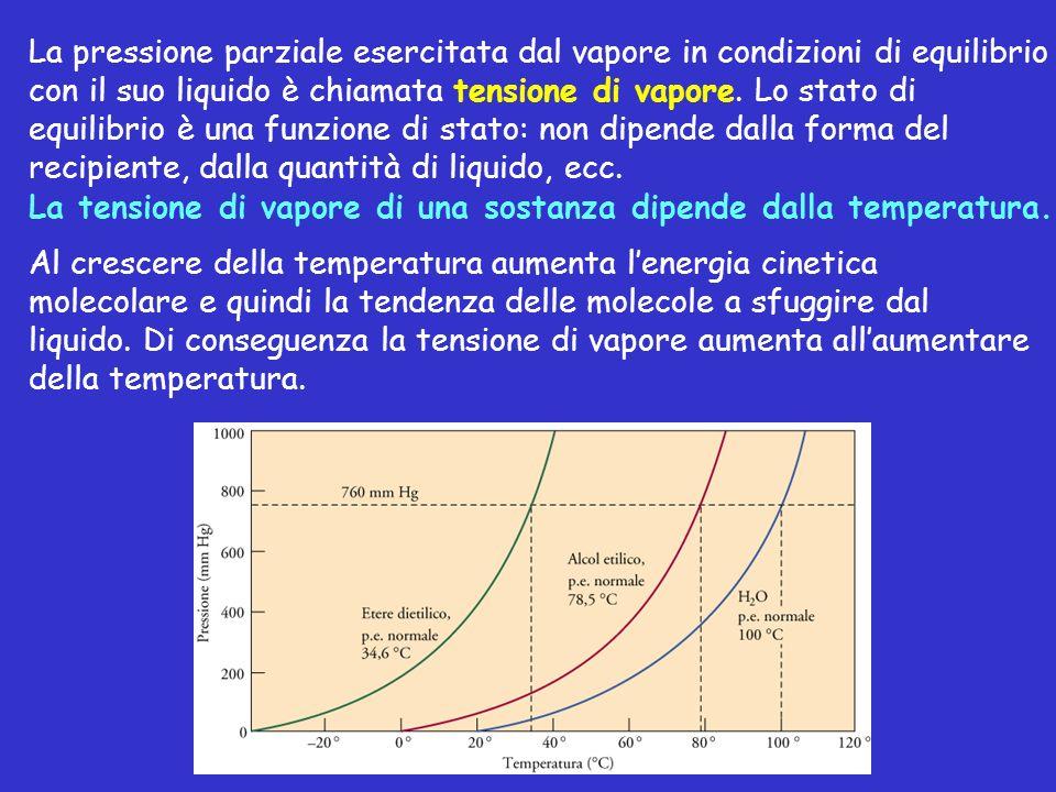 La pressione parziale esercitata dal vapore in condizioni di equilibrio con il suo liquido è chiamata tensione di vapore. Lo stato di equilibrio è una funzione di stato: non dipende dalla forma del recipiente, dalla quantità di liquido, ecc.