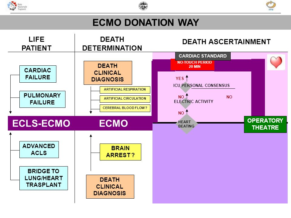 ECMO DONATION WAY ECLS-ECMO ECMO