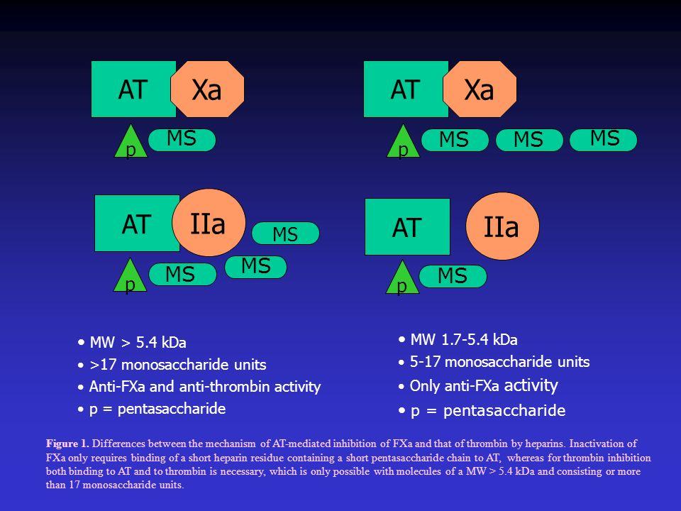 Xa IIa AT MS MS MS MS MS MS MS p MS MW 1.7-5.4 kDa MW > 5.4 kDa