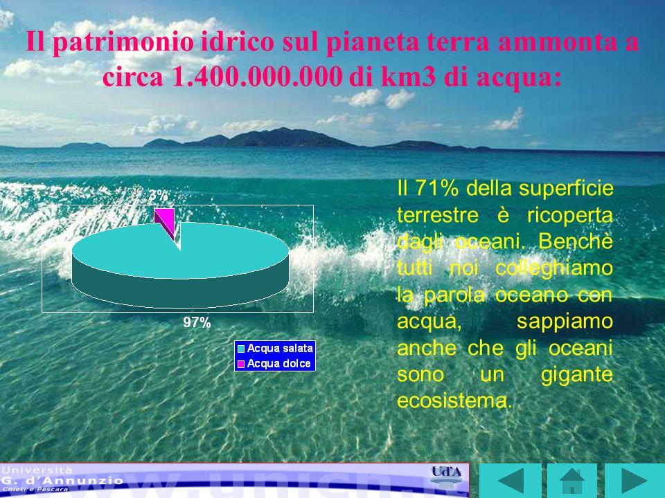 Il patrimonio idrico sul pianeta terra ammonta a circa 1. 400. 000