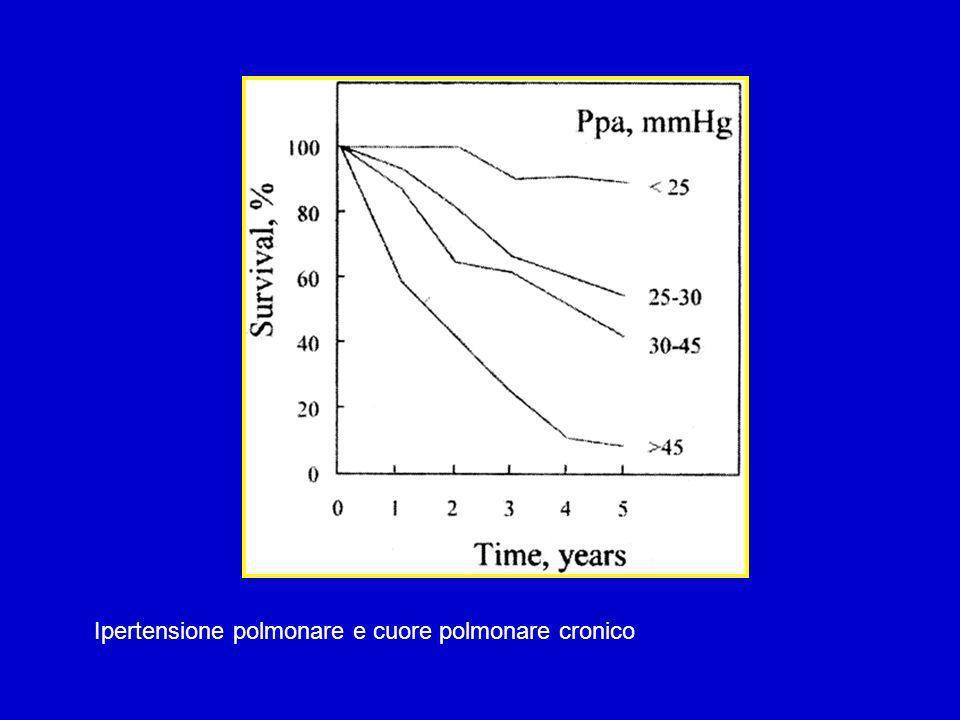 Ipertensione polmonare e cuore polmonare cronico