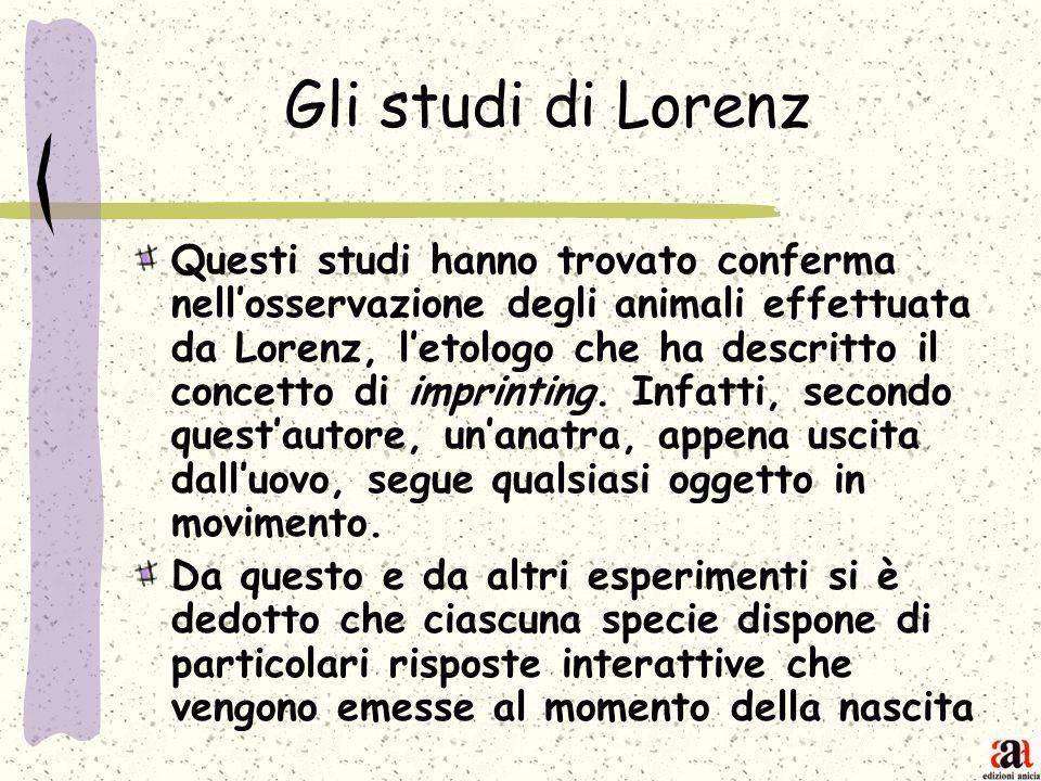 Gli studi di Lorenz