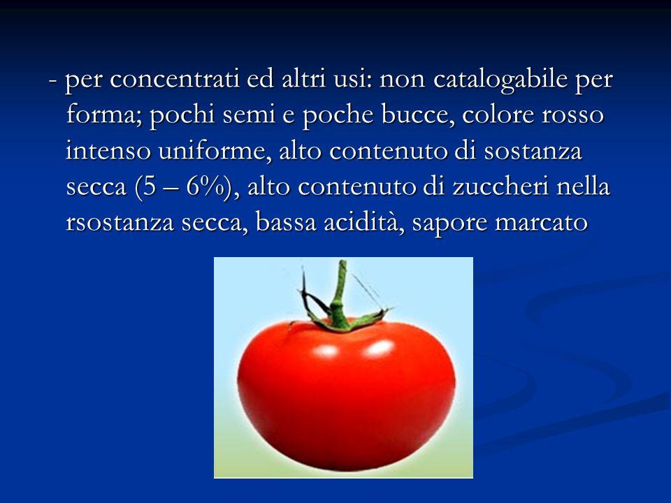 - per concentrati ed altri usi: non catalogabile per forma; pochi semi e poche bucce, colore rosso intenso uniforme, alto contenuto di sostanza secca (5 – 6%), alto contenuto di zuccheri nella rsostanza secca, bassa acidità, sapore marcato