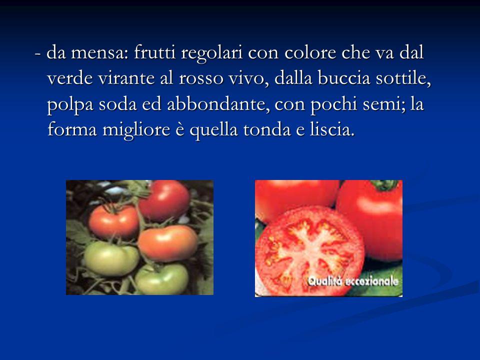 - da mensa: frutti regolari con colore che va dal verde virante al rosso vivo, dalla buccia sottile, polpa soda ed abbondante, con pochi semi; la forma migliore è quella tonda e liscia.