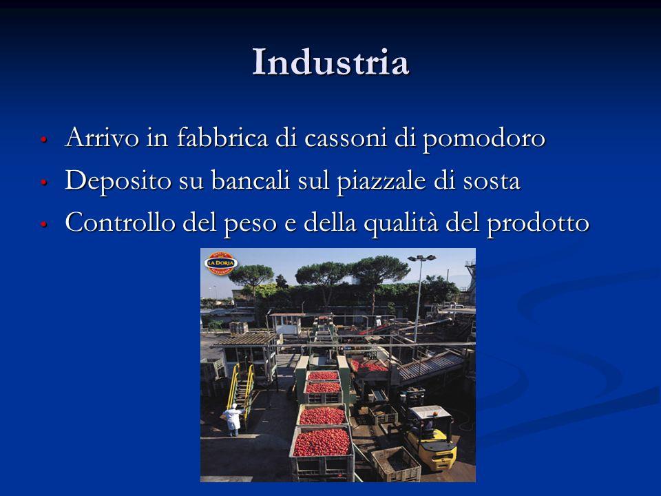 Industria Arrivo in fabbrica di cassoni di pomodoro