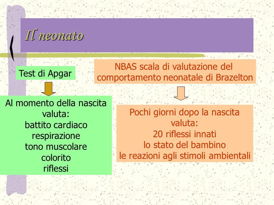 Il neonato NBAS scala di valutazione del