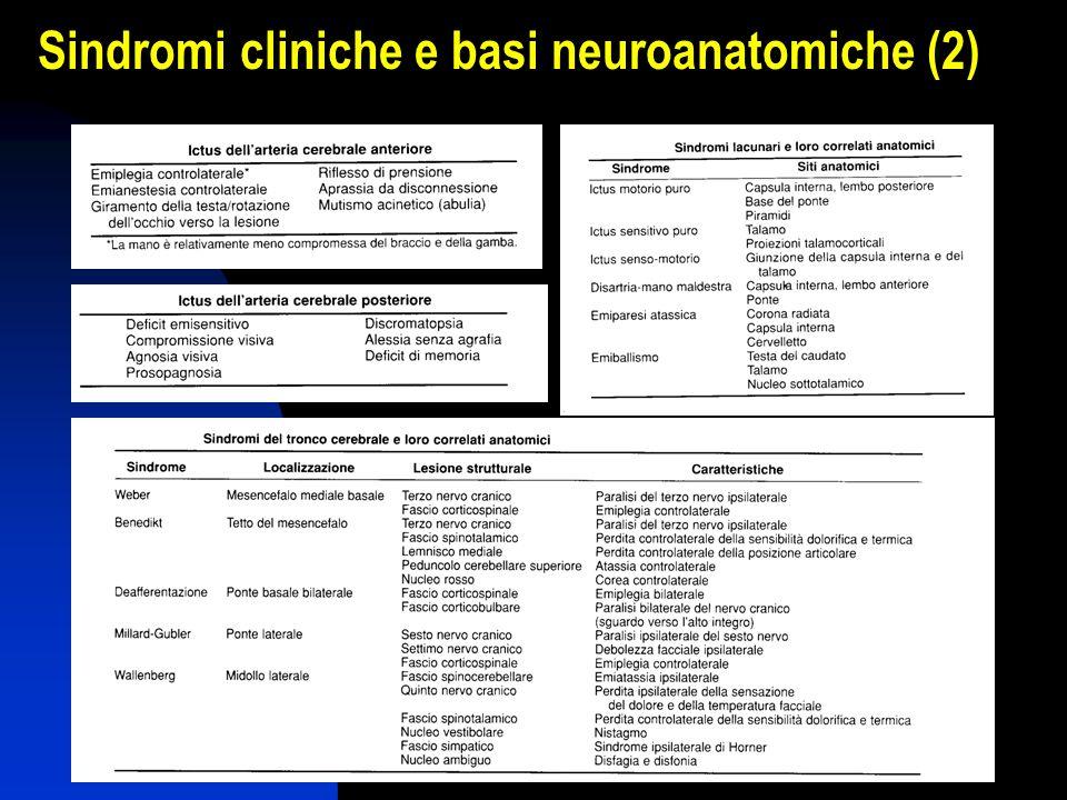 Sindromi cliniche e basi neuroanatomiche (2)