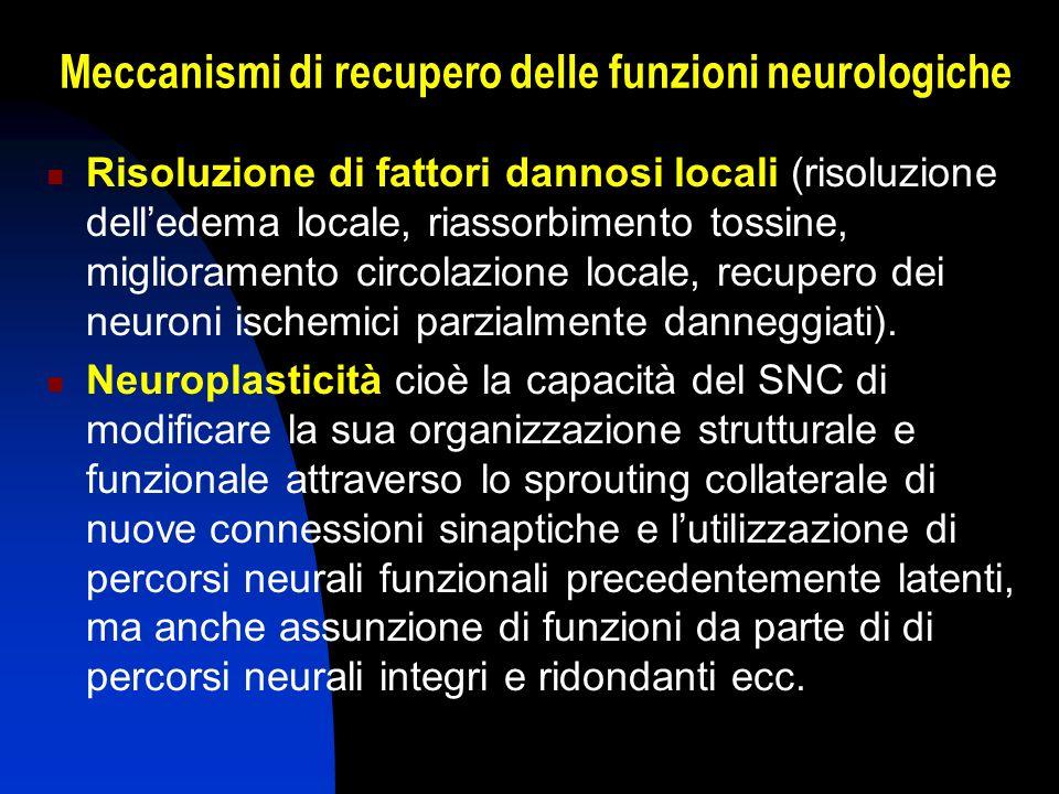 Meccanismi di recupero delle funzioni neurologiche