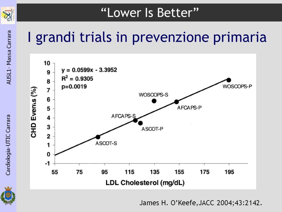 I grandi trials in prevenzione primaria