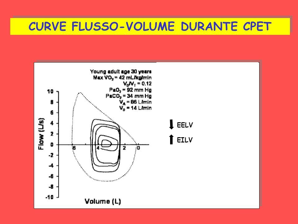CURVE FLUSSO-VOLUME DURANTE CPET