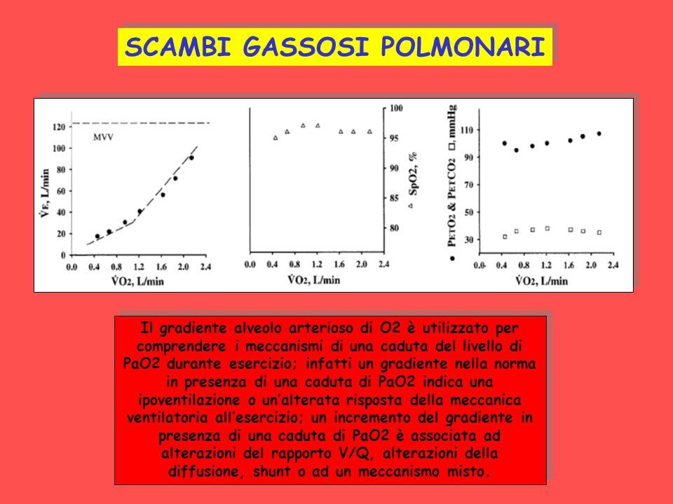 SCAMBI GASSOSI POLMONARI