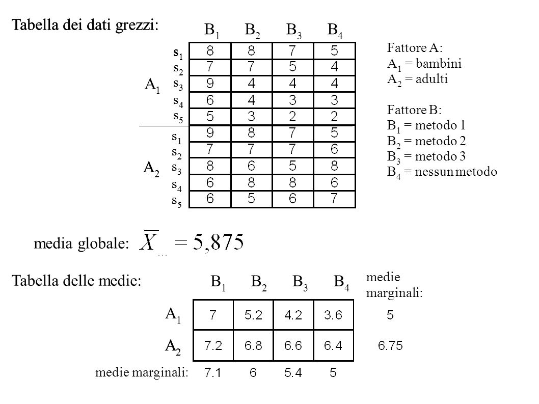 Tabella dei dati grezzi: Tabella dei dati grezzi: B1 B2 B3 B4