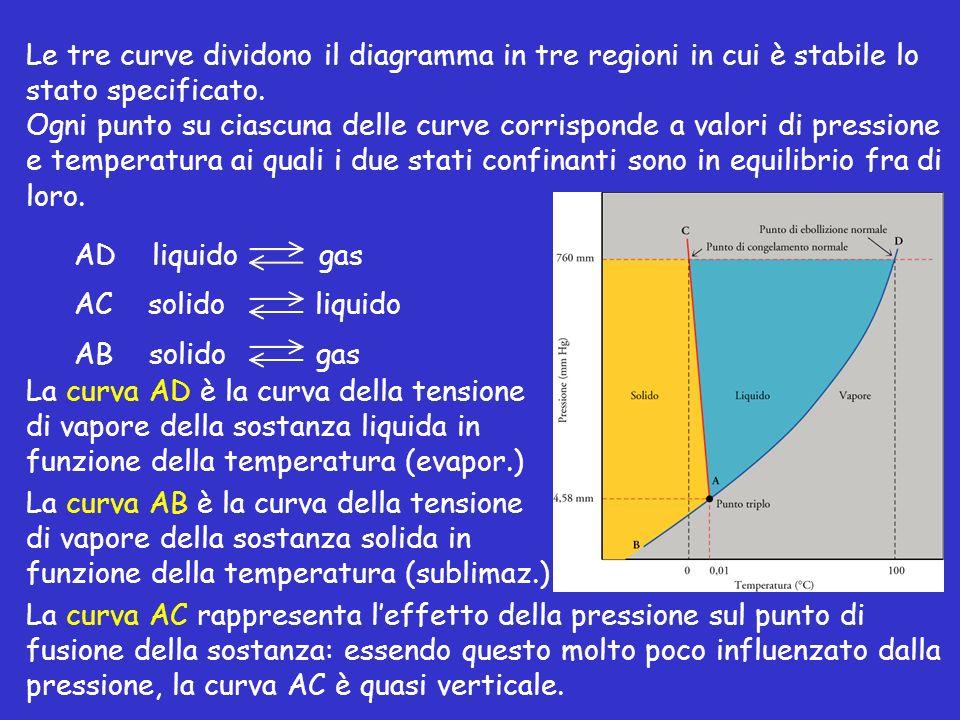 Le tre curve dividono il diagramma in tre regioni in cui è stabile lo stato specificato.