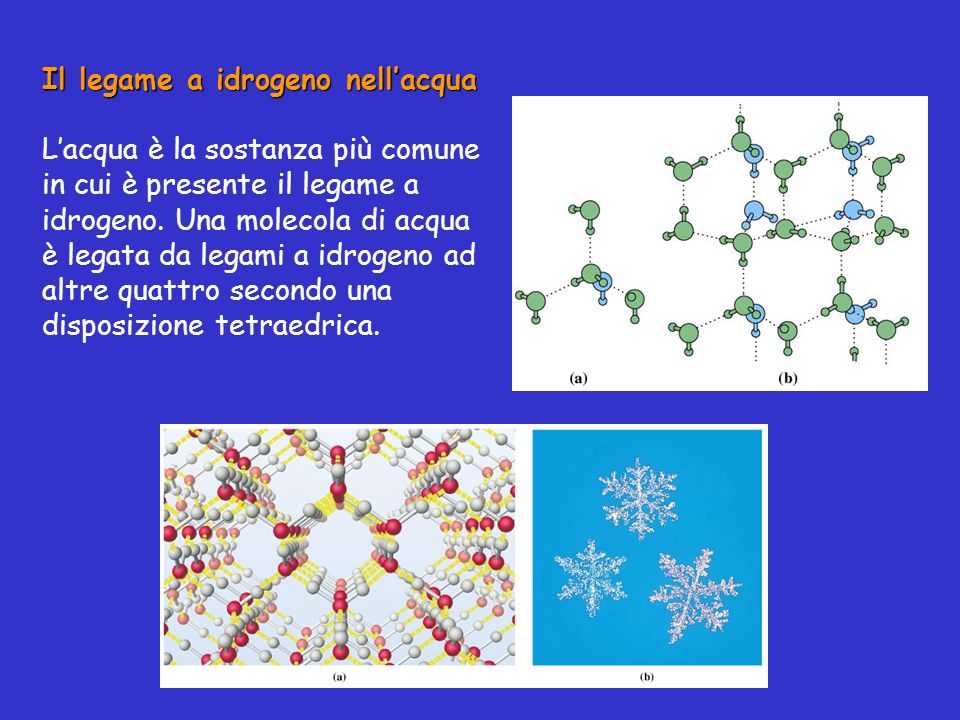 Il legame a idrogeno nell'acqua