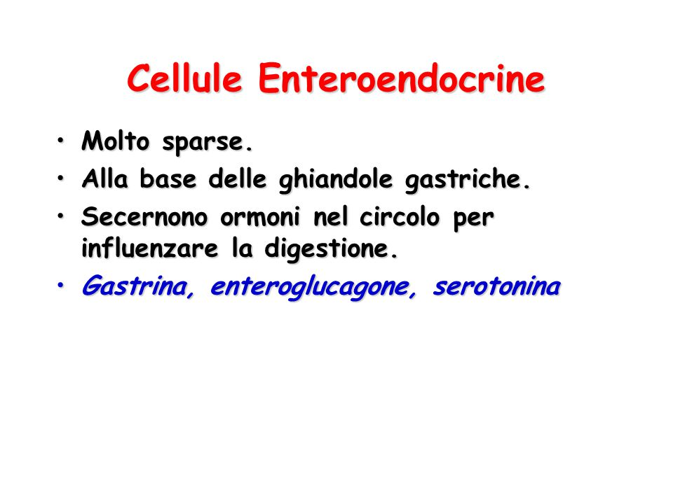 Cellule Enteroendocrine