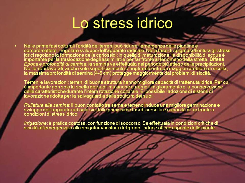Lo stress idrico
