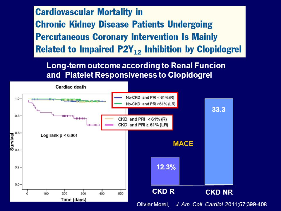 Long-term outcome according to Renal Funcion