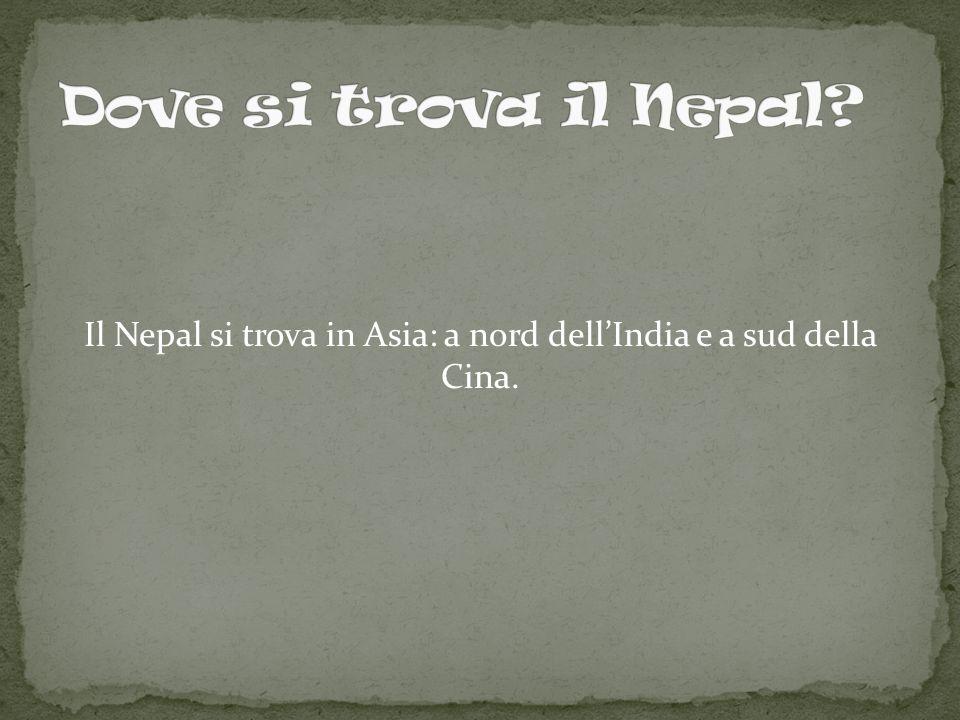Il Nepal si trova in Asia: a nord dell'India e a sud della Cina.
