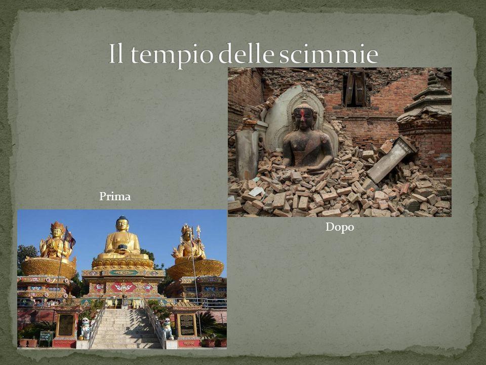 Il tempio delle scimmie