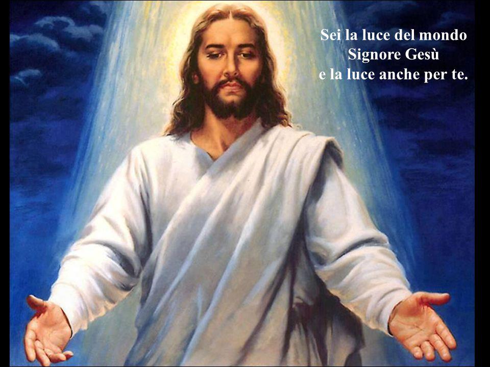 Sei la luce del mondo Signore Gesù e la luce anche per te.