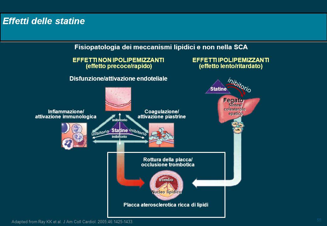 Effetti delle statine Fisiopatologia dei meccanismi lipidici e non nella SCA. EFFETTI NON IPOLIPEMIZZANTI.
