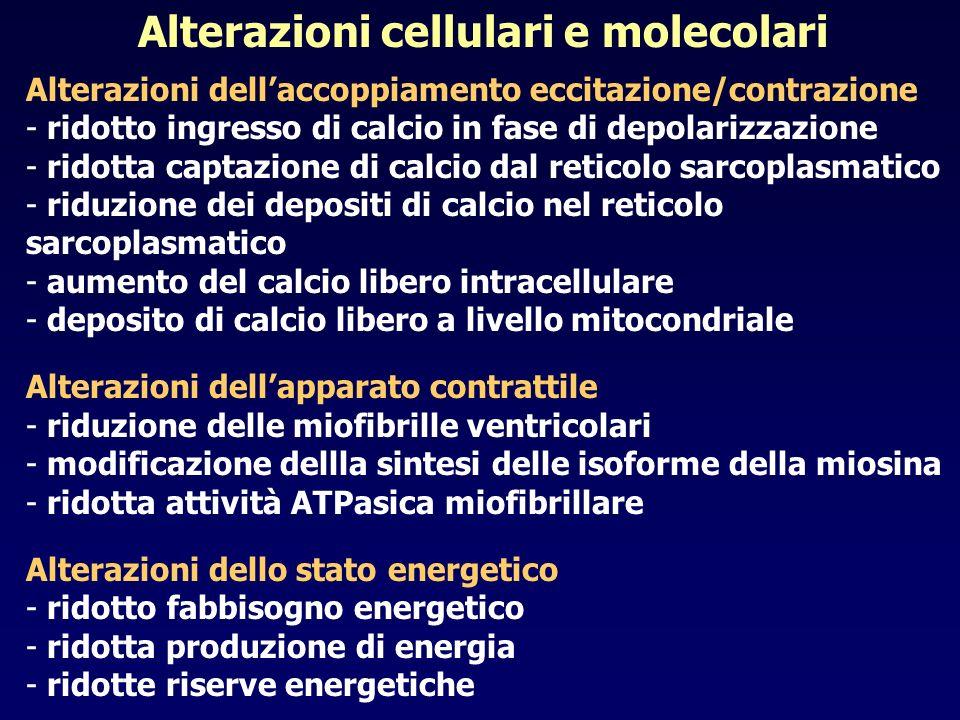 Alterazioni cellulari e molecolari