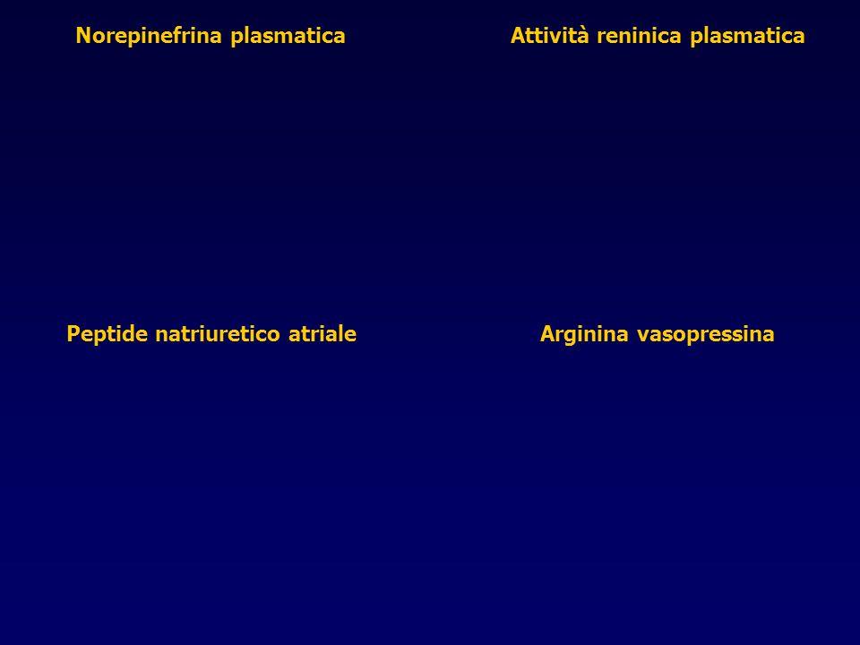 Norepinefrina plasmatica