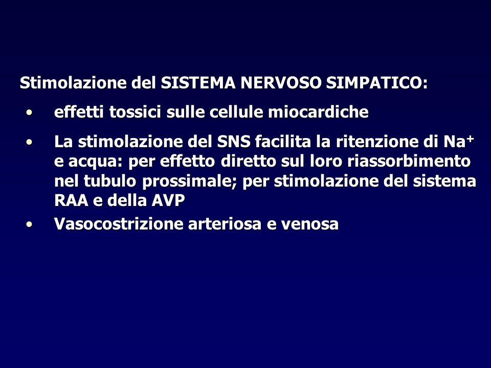 Stimolazione del SISTEMA NERVOSO SIMPATICO: