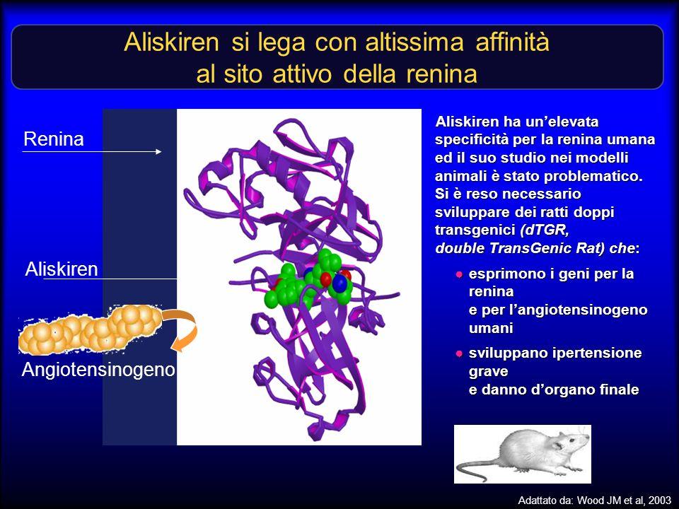 Aliskiren si lega con altissima affinità al sito attivo della renina