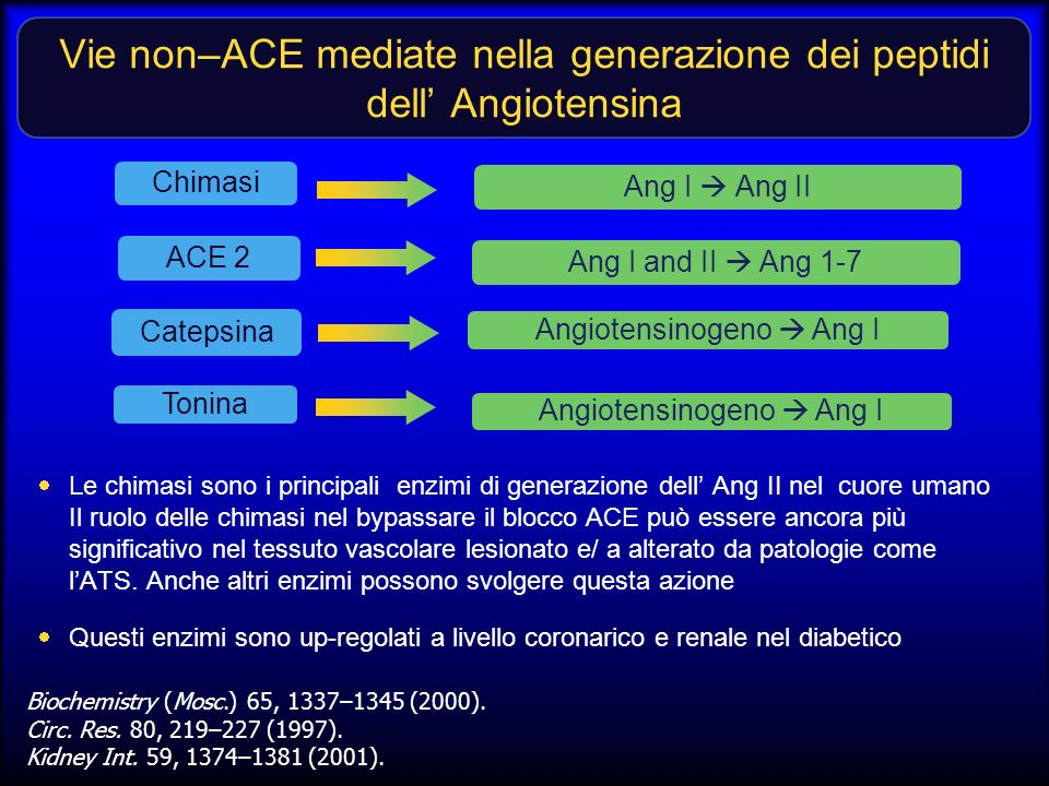 Vie non–ACE mediate nella generazione dei peptidi dell' Angiotensina