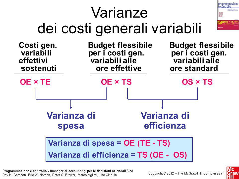 Varianza di efficienza