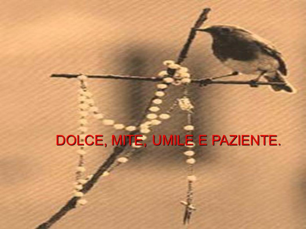 DOLCE, MITE, UMILE E PAZIENTE.