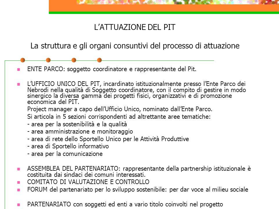 L'ATTUAZIONE DEL PIT La struttura e gli organi consuntivi del processo di attuazione