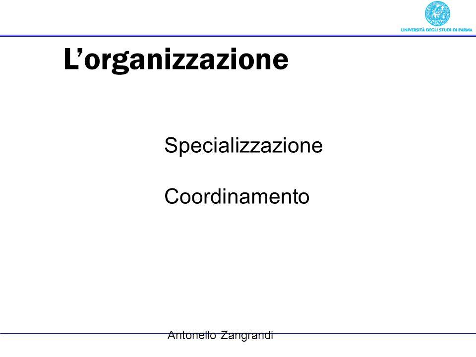 L'organizzazione Specializzazione Coordinamento Antonello Zangrandi