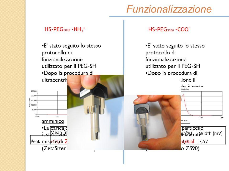 Funzionalizzazione HS-PEG3000 –NH3+ HS-PEG3000 –COO-