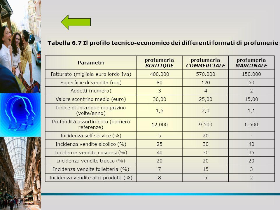 Tabella 6.7 Il profilo tecnico-economico dei differenti formati di profumerie