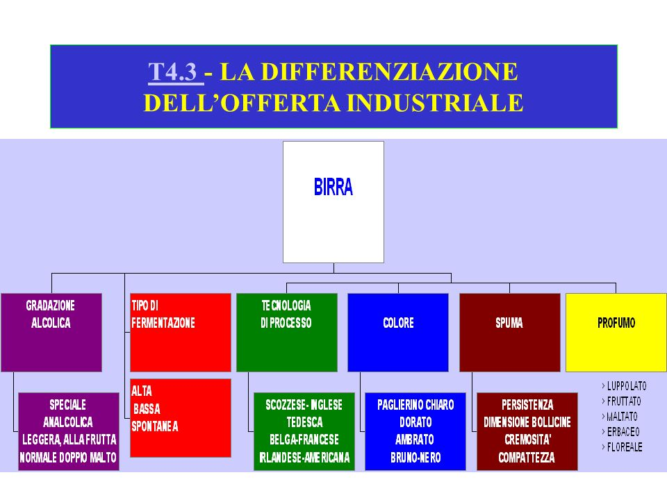 T4.3 - LA DIFFERENZIAZIONE DELL'OFFERTA INDUSTRIALE