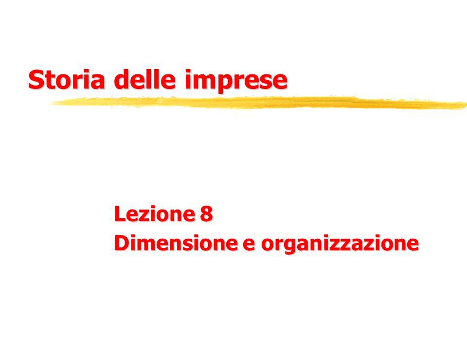 Lezione 8 Dimensione e organizzazione