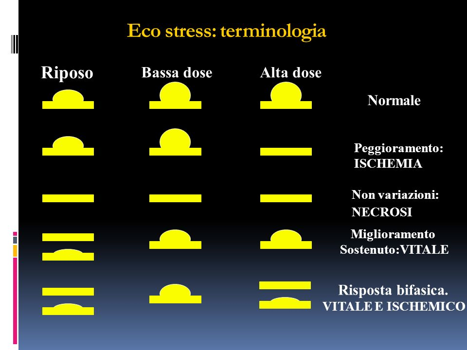 Eco stress: terminologia