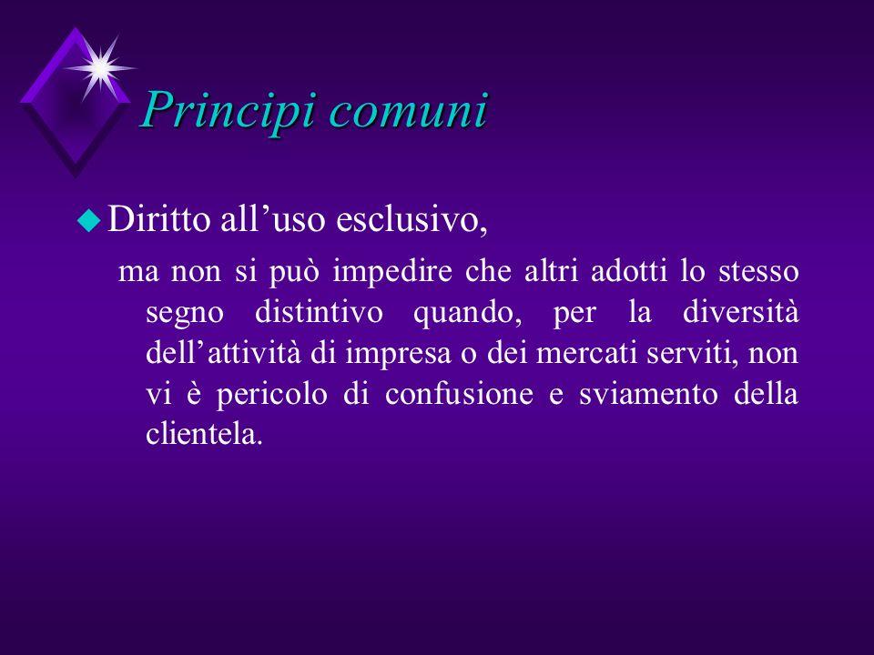 Principi comuni Diritto all'uso esclusivo,