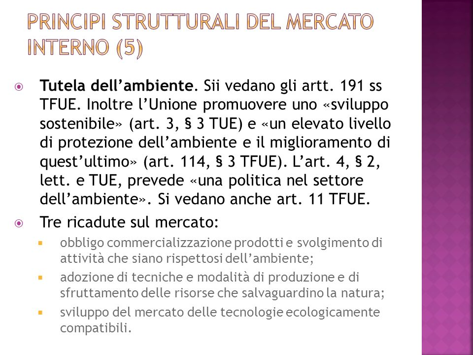 Principi strutturali del mercato interno (5)