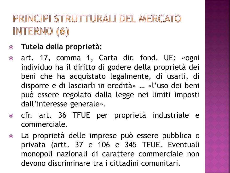 Principi strutturali del mercato interno (6)