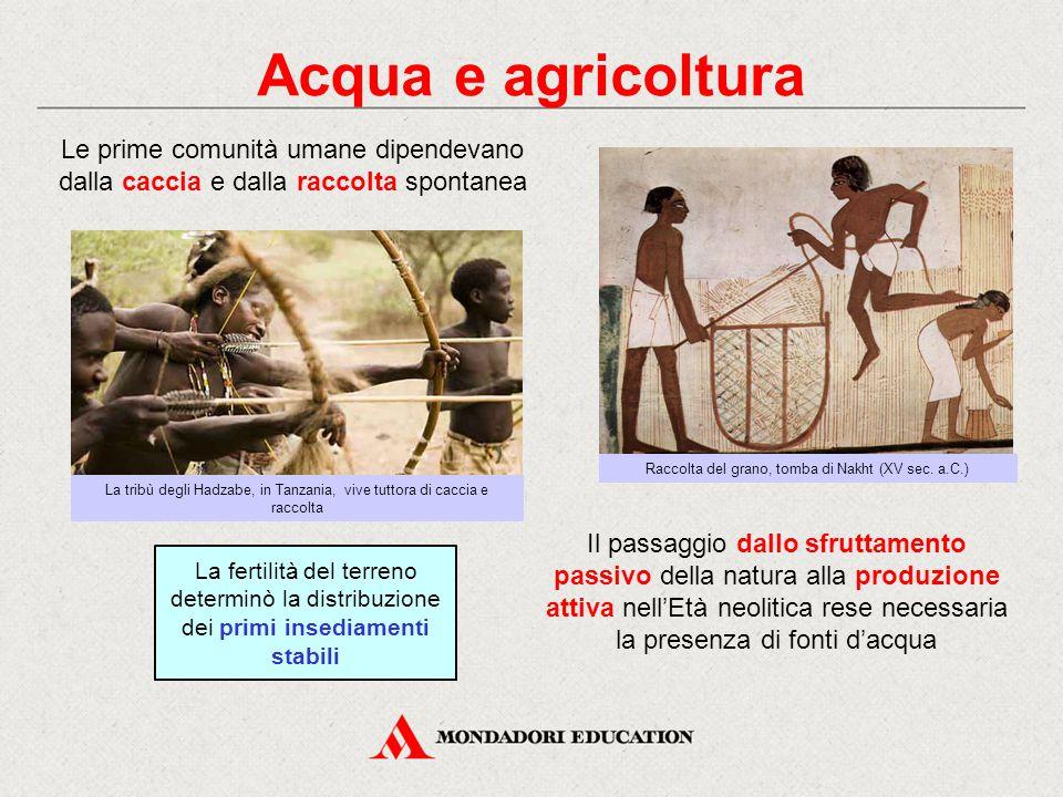 Acqua e agricoltura Le prime comunità umane dipendevano dalla caccia e dalla raccolta spontanea. Raccolta del grano, tomba di Nakht (XV sec. a.C.)