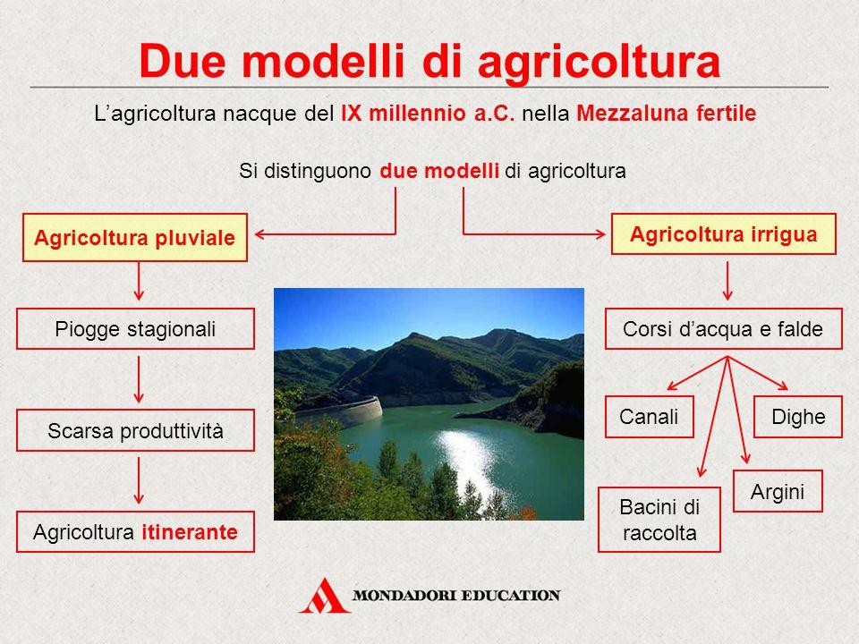 Due modelli di agricoltura