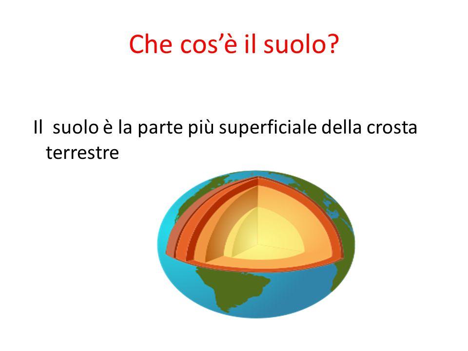 Che cos'è il suolo Il suolo è la parte più superficiale della crosta terrestre