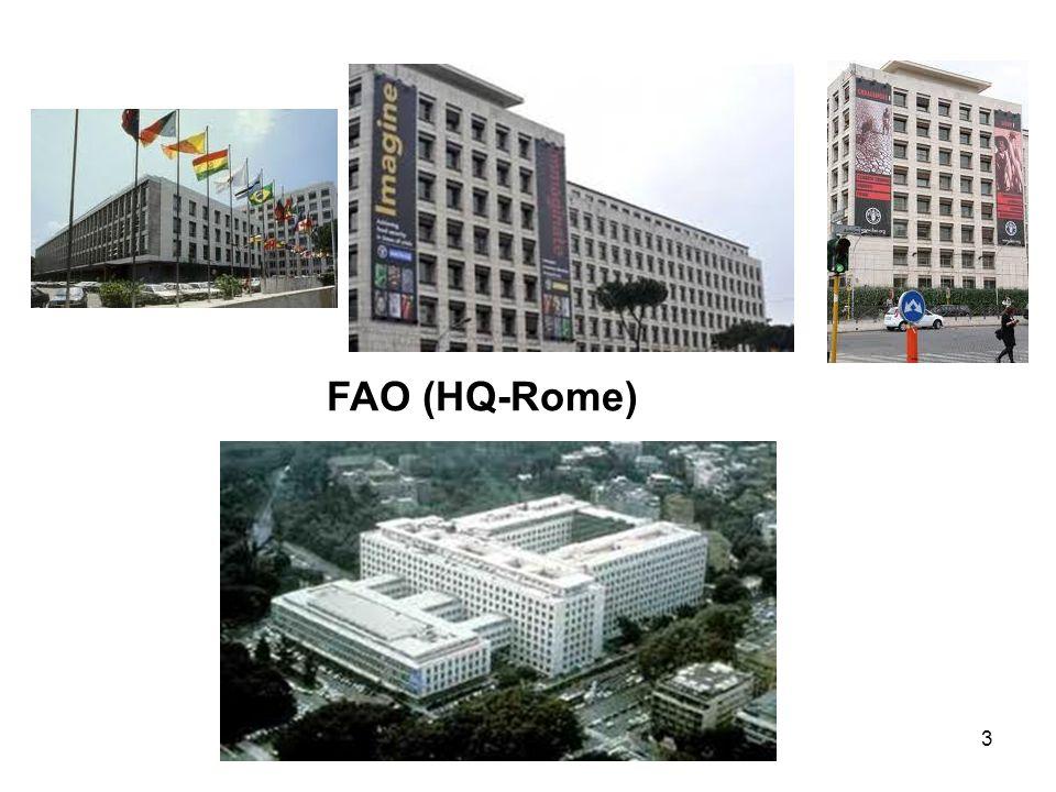 FAO (HQ-Rome)