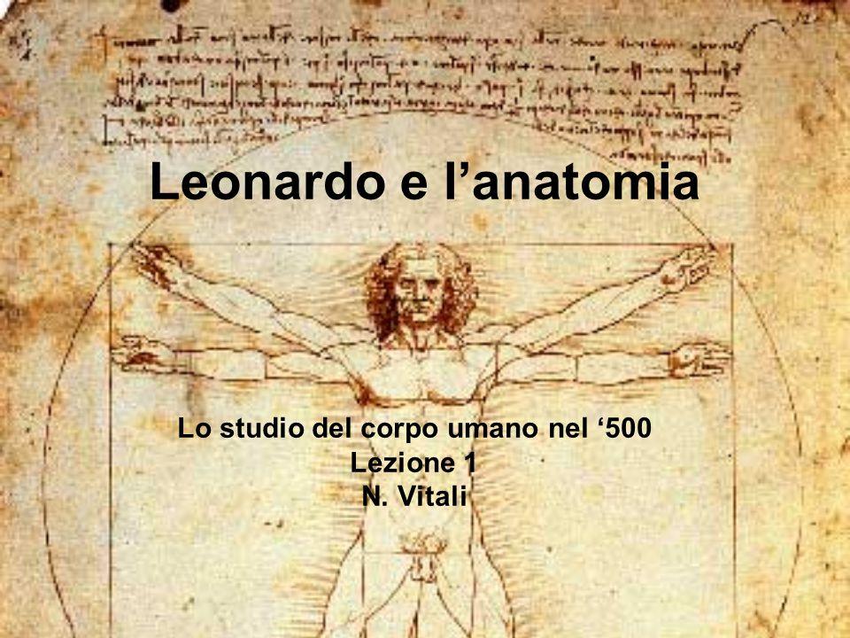 Lo studio del corpo umano nel '500 Lezione 1 N. Vitali